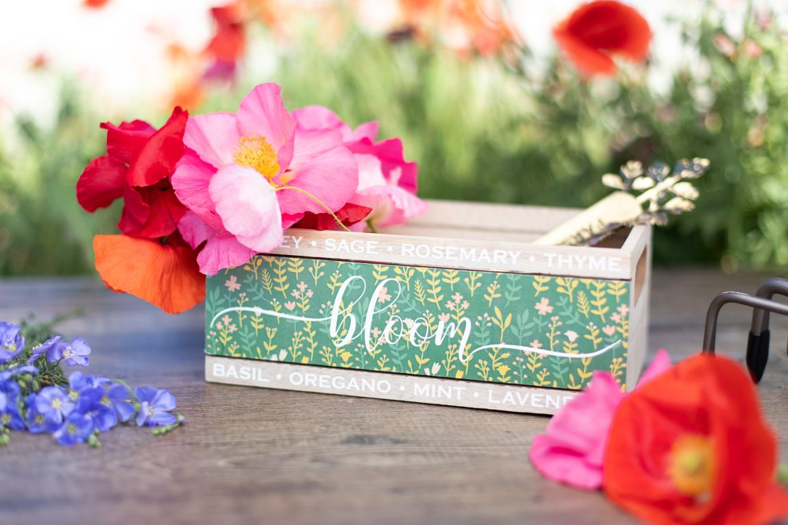 Featured Image for Garden Crate (#123850)